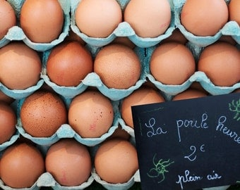 Paris Food Photography - Fresh Eggs at Paris Market, French Kitchen Decor, Large Wall Art