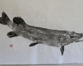 NORTHERN PIKE Original Gyotaku - traditional Japanese fish art by dowaito (2)