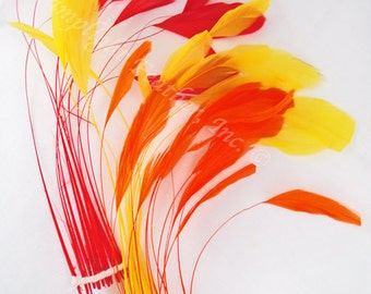 30+ feathers, Sunset Mix, stripped coque Mix, Red, Orange, Yellow, hat feathers, millinery -SCMSUN