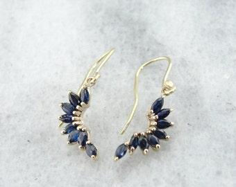 Gorgeous Blue Sapphire Drop Earrings in Fine Gold - 721TU0-D