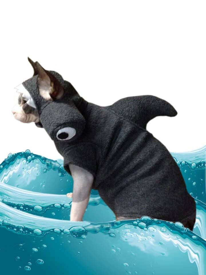 shark pet costume cat hat sphynx cat clothes by simplysphynx. Black Bedroom Furniture Sets. Home Design Ideas