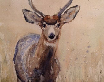 Deer, watercolor.