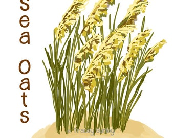 Sea Oats Original Art, sea oats clip art, sea oats printable, sea oats graphic