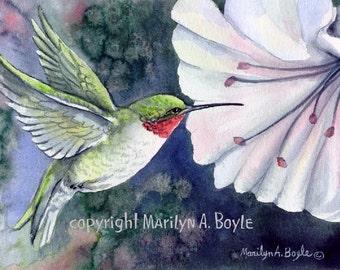 PRINT - RUBYTHROATED HUMMINGBIRD: Flower, bird, nature, garden, wings, flying, hibiscus,