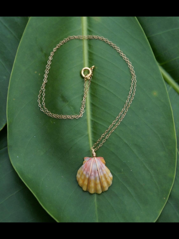 Sunrise Shell Necklace Sunrise Shell Necklace