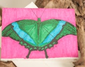 Original Hand Drawn Butterfly Blank Card With Envelope, Frame-able Art, Great Gift