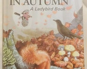 Ladybird What To Look For In Autumn Series 536