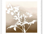 Limited edition botanical print with hand-torn edges - Lenten Rose No. 6