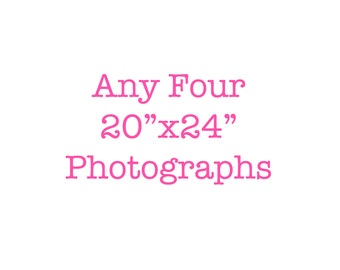 20x24 custom picture set discounted set of 4 photographs affordable nursery art wall art home decor fine art photography your choice