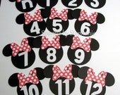 """Minnie Mouse Picture Banner l Minnie Photo Banner l First Birthday Banner l Minnie Party Decorations l First Year Banner l 2.5"""" Minnie Heads"""
