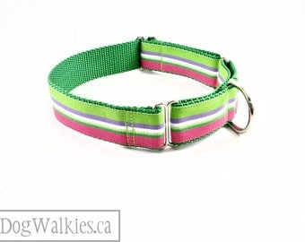 """Watermellon Pink and Green Stripes - Summer Dog Collar - 1"""" Wide (25mm) - Martingale or Quick Release - Choice of collar style and size"""