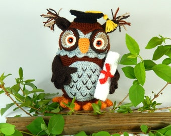 Wesley the Wise Owl, Amigurumi Crochet Pattern, Graduation Owl