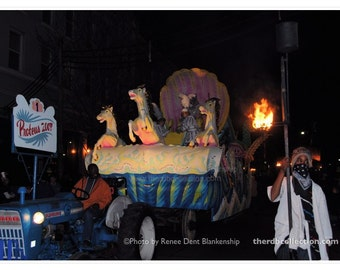 Mardi Gras Float Photograph - New Orleans