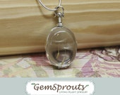 Dandelion Wishes -  Sterling Silver Antique Glass Locket with Silver Chain and Dandelion Wisps