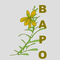 BeadAPeaOpolis