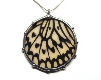 Real Paperwhite Kite Butterfly Wing Necklace - Circle Pendant