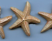 Lot of 3 Polymer Clay  Large Starfish Cabs LSTR 3        Undrilled