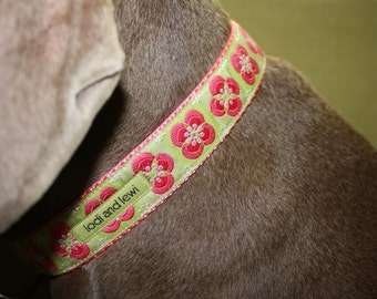 Wallflower Collar in pink and green