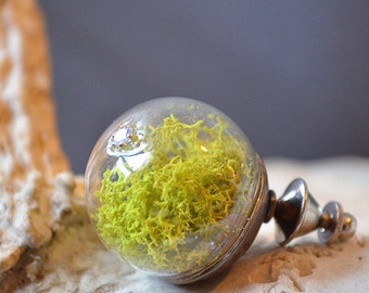 Hobbit Moss Brooch Made With Real Moss