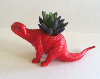 Red Dinosaur Planter Great Dorm Office Home Decor Gift for Get Well  Boss' Teachers
