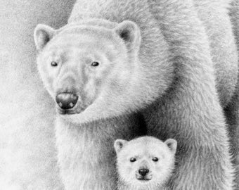 A4 Fine Art Giclee Print of a Polar Bear and Cub, Wildlife Art Gift, Animal Drawing, Picture, Wall Art Print