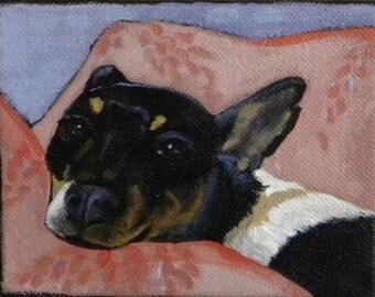 Sweet Terrier blank greeting card