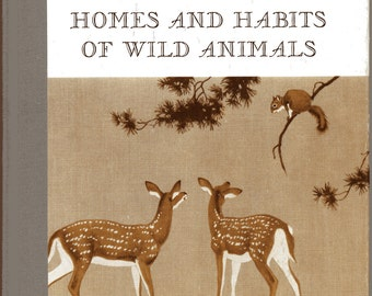 1930's Children's Wildlife Book Homes and Habits of Wild Animals with Large Beautiful Illustrations by Walter Alois Weber