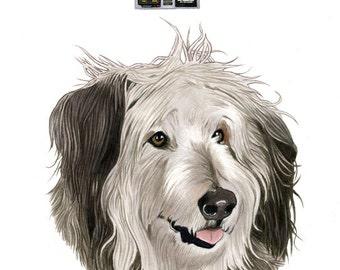 Einstein The Dog Limited Edition Art Print by Ryan Berkley