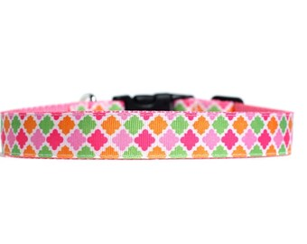 1 Inch Wide Dog Collar with Adjustable Buckle or Martingale in Tutti Fruitti
