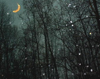 Whimsical Wall Decor Night Sky Moon and Stars Photo Surreal Nature Decor Night Landscape Picture 8x10 inch Photography Print Banana Moon