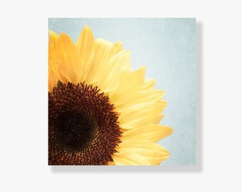 Sunflower photo canvas, yellow sunflower photo, pale blue, shabby chic decor, nature photograph, large wall art, flower photo - Sunshine