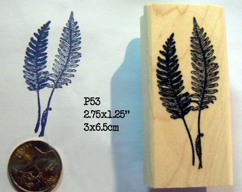 2 Fern leaves rubber stamp P53