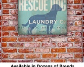 Rescue Dog Laundry Company illustration graphic art on gallery wrapped canvas by stephen fowler