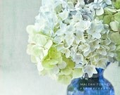 Hydrangea Flower Photography, floral bouquet, cobalt blue vase, pastel green, yellow, shabby chic print