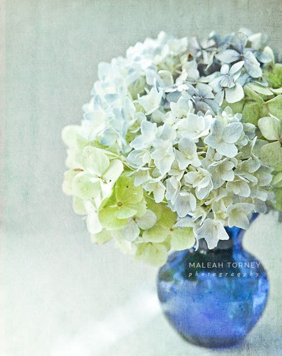 Hydrangea Flower Photography, floral bouquet, cobalt blue vase, pastel green, yellow, shabby chic print