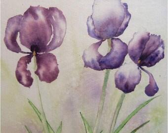 Purple Irises Original Watercolor