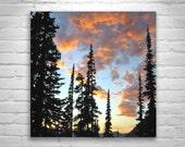Northwest Art, Washington State, Pacific Northwest Art, Cascades Mountains, Forest Landscape Photograph, Sunset, Silhouette Art, Woodlands