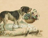 Dog with basket of flowers and a letter vintage scrapbook and crafting art print