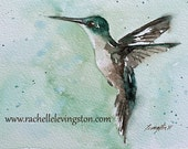 for her watercolor painting bird art print bird PRINT SET painting of Hummingbird painting art PRINT hummingbird mothers day gift  8x10