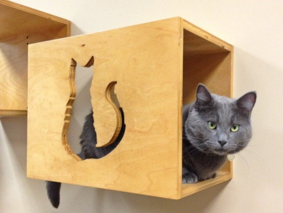 Decorative Wall Shelves For Cats : Items similar to decorative cat wall perch art