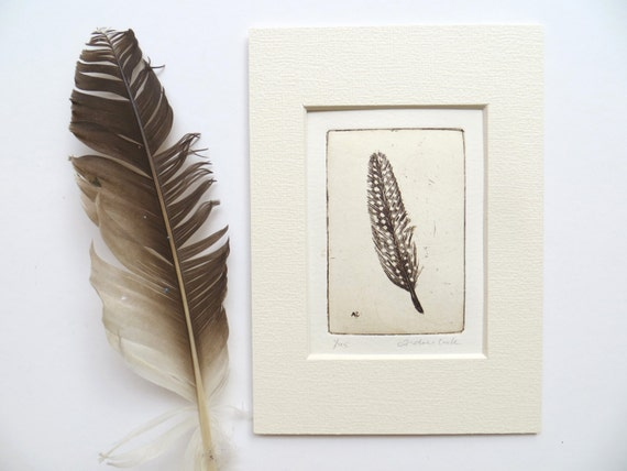 original etching of a spotted feather
