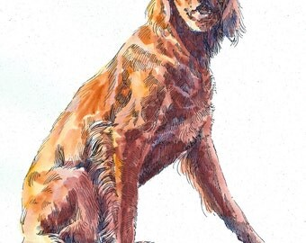 IRISH SETTER Original Watercolor on Ink Print Matted 11x14 Ready to Frame