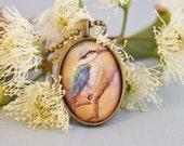 postage stamp pendant, redbacked kingfisher bird necklace, Australia 2010 postage stamp