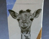 Hand Painted Baby Giraffe Portait Jar Container Blue and Orange