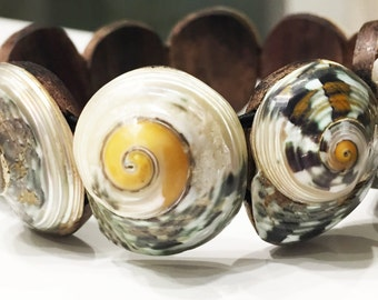 Bracelet seashells collection