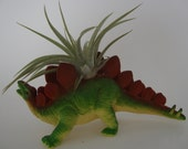 DINOSAUR SALE!  Stegosaurus Dinosaur Planter Pot - Room Decor, Desktop, Table, Dorm - Air Plant, Succulent, Haworthia or Cactus