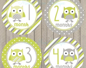 FREE GIFT, Monthly Baby Stickers,  Baby Month Sticker, Bodysuit Stickers,  Milestone Stickers, Photo Prop Green Grey Gray Owls