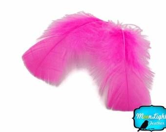 Turkey Feathers, 1 Pack - HOT PINK Turkey Flat Plumage Feathers 0.50 oz.  : 164