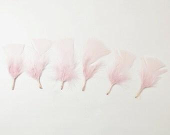 12pcs Turkey Flat Feathers-Blush Pink