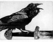 Raven artwork , Raven, crow,  Etching. 5 x 7 inch 2010